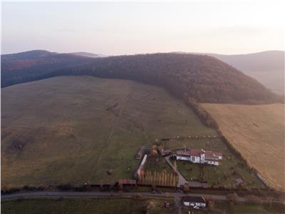 Teren extravilan in Sangeorgiu de Mures, 45750 mp