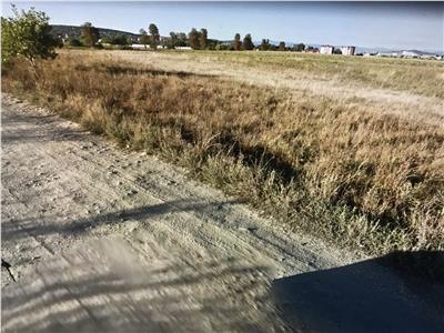 De vanzare teren in Reghin, 1,56 ha, strada Castanilor